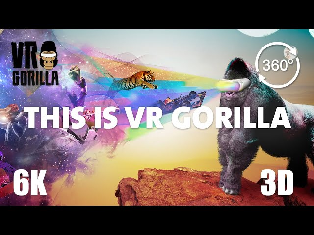 This is VR Gorilla - Best Of VR Compilation 2015-2020 (6K 360 3D Video)