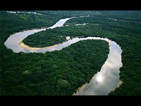 Amazon Rainforest, South America - Best Travel Destination