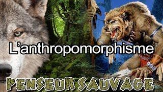 Un animal n'a pas d'émotions ? | L'anthropomorphisme - [Animaux CH.2 EP.01]