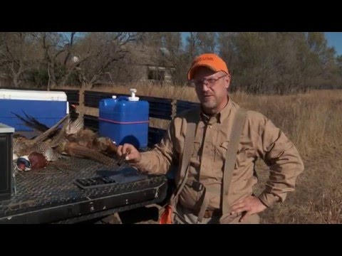 Chokes And Shells For Small Birds -- Safe Shooting & Hunting Tips With Dave Miller