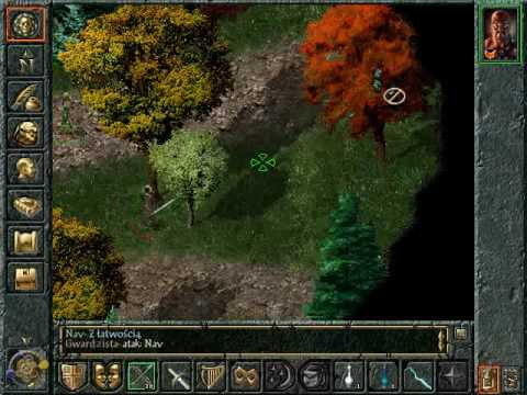 Baldur's Gate II: Shadows of Amn Solo Rogue Guide for PC ...