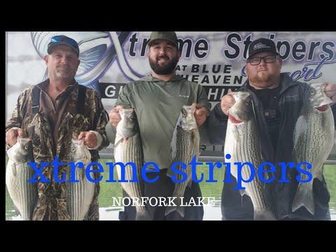 STRIPER FISHING WITH XTREME STRIPERS NORFORK LAKE ARKANSAS