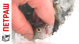 Зимняя рыбалка НА СПОРТИВНУЮ МОРМЫШКУ