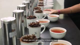 The Elusive Muscatel | Teabox