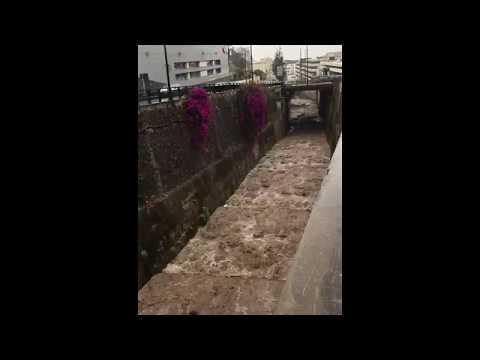 Ribeira de São João aguentou bem o enorme fluxo de água, veja o vídeo