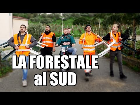 LA FORESTALE al SUD