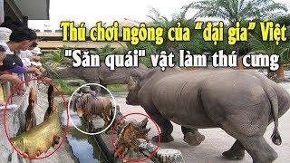 """Thú chơi ngông của đại gia Việt """"Săn quái"""" vật làm thú cưng   Tài chính kinh doanh"""