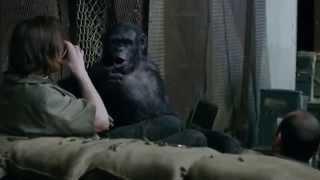 Планета обезьян: Революция - трейлер #3