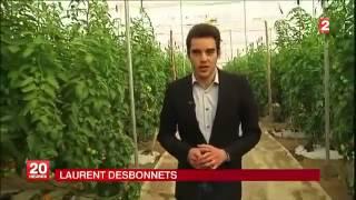 agriculture au maroc-france