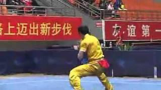 2010年全国武术套路锦标赛(传统)M08 001 男子翻子拳 赵效勇
