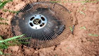 Amazing Boy Make Turtle Trap In 10 Minutes Using PVC Fan And Plastic Basket To Catch Big Turtle