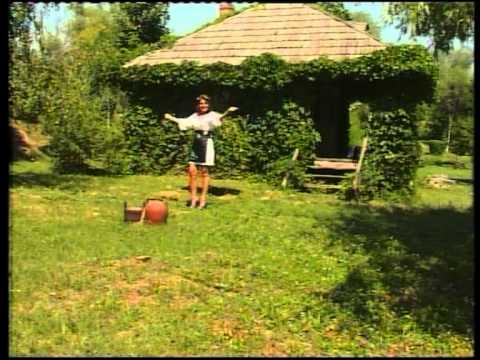 Violeta Constantin - Vai de capul tau barbate Muzica populara de petrecere