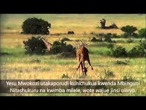 Roho yangu na ikuimbie - Tom Randa Then sings my soul music/Swahili lyrics