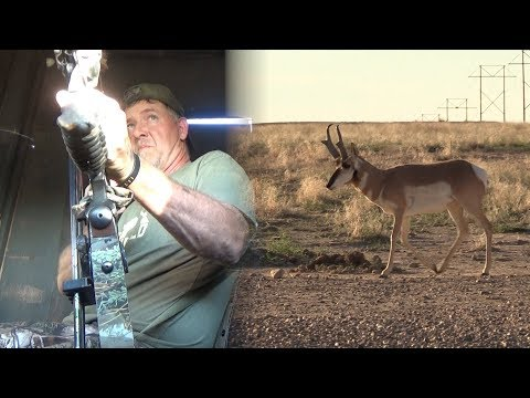 Recurve Antelope In Colorado - Fred Eichler