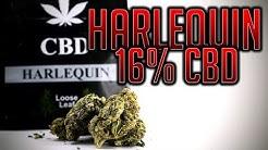 HARLEQUIN 16% CBD | UK LEGAL CBD WEED | LooseLeaf.cbd