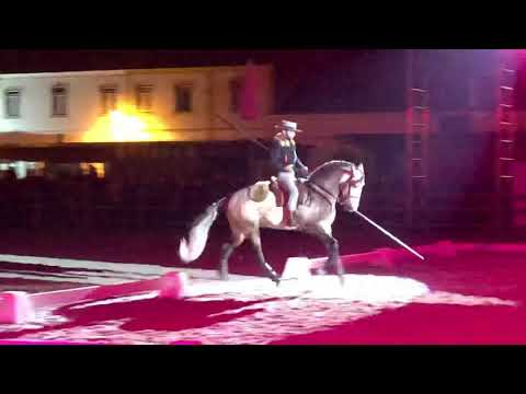 Frederico Peres Gala Equestre Golegã 2018
