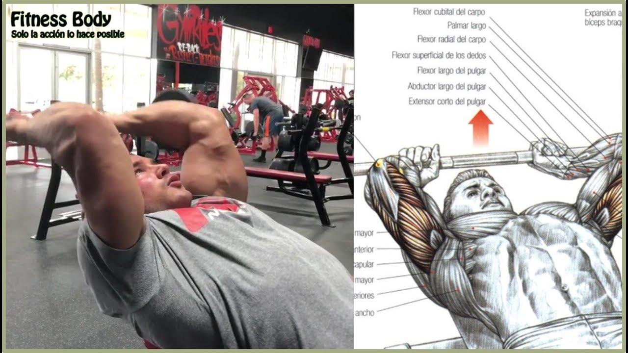 10 Ejercicios para el Tríceps (10 Triceps Workout) | Fitness Body #1
