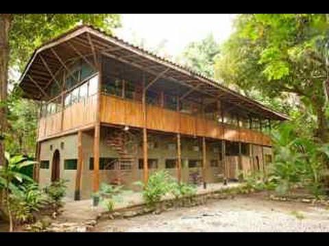 Santa teresa costa rica vacation rental the jungle house for Jungle house music
