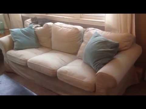 IKEA EKTORP Sofa Couch Tygelsjö beige Customer Product Review Video
