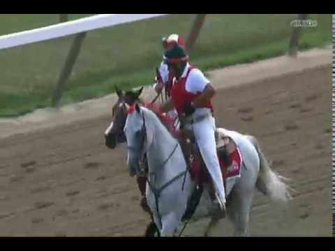 Songbird - 2017 Personal Ensign Stakes - Second Place Finish