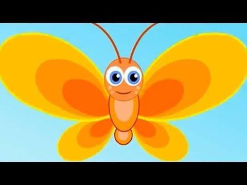 Эрвээхэй | Хүүхдийн Дуу | Erveehei | Huuhdiin Duu | Mongolian Butterfly Song
