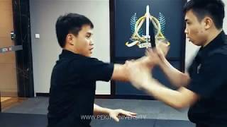 Filipino Martial Arts Online Training: Does it Work?