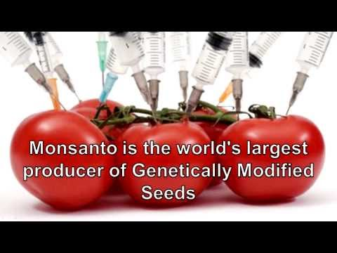 The Killing of America - Monsanto EXPOSED