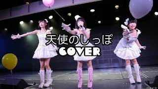 【Male Cover】天使のしっぽ (Tenshi No Shippo) - AKB48