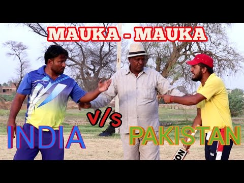 worldcup final cricket match ! hariyanvi comedy