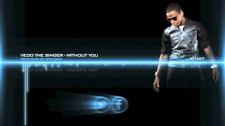 Vedo The Singer - Without you