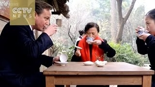 British tea garden wants to export to China