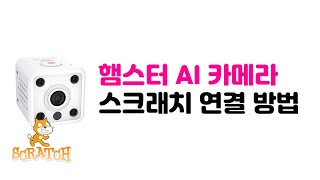 햄스터 AI 카메라 스크래치 연결 가이드