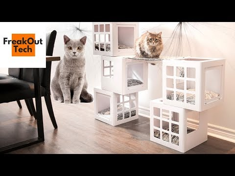 5 Awesome Inventions Your Cat Will Love | Best Cat Inventions