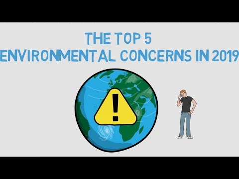 The Top 5 Environmental Concerns in 2019