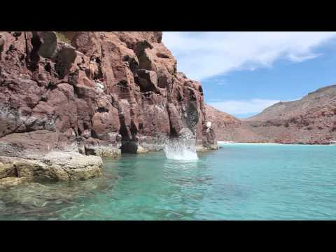 Cliff Jumping at Isla Partida, Baja