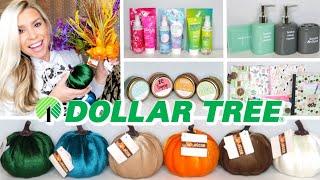 DOLLAR TREE HAUL | VELVET PUMPKINS & NEW FINDS | JULY 2019