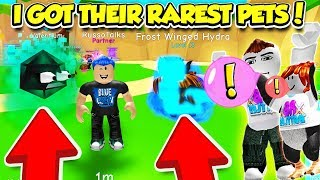These YouTubers LOST and HAD to GIVE ME THEIR RAREST PETS IN BUBBLE GUM SIMULATOR!! (Roblox)
