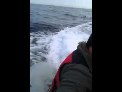 Turkish coast guard attacks Refugees