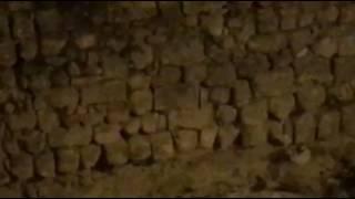 Topi colonizzano la fontana del Ss. Salvatore