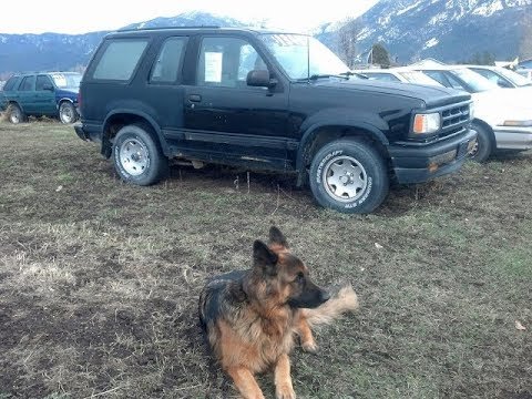 1991 mazda navajo for sale missoula montana 4×4 159k $1340