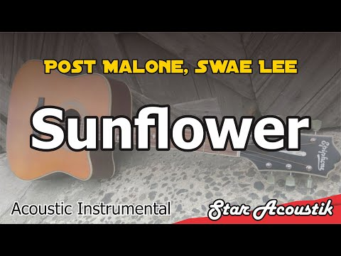 Post Malone, Swae Lee - Sunflower (Acoustic Karaoke Instrumental Lyrics)