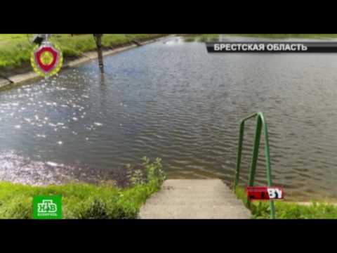 Телеканал НТВ смотреть онлайн в хорошем HD качестве