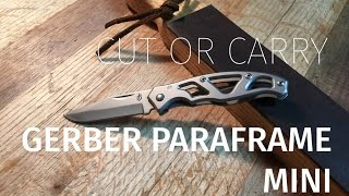 Gerber Paraframe Mini Review - A Mini Disappointment