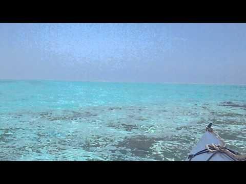 飲めそうな水の色。心地よい水の音。