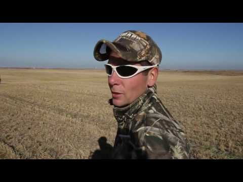 Hired to Hunt Season 2 #8 - Goose Hunting and Duck Hunting.  Limit hunts in Alberta