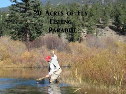 Colorado springs fly fishing property for sale youtube for Fish store colorado springs