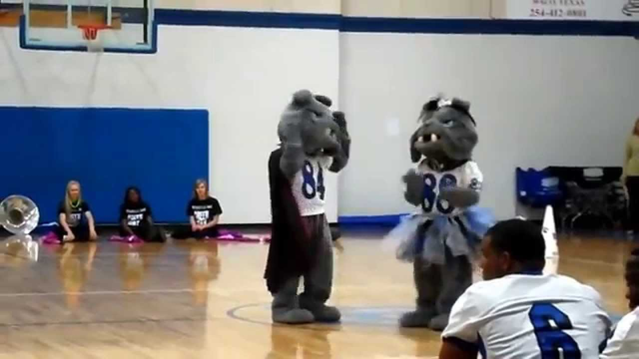 Funny school mascot skit ideas  The Real Reason Why We Call