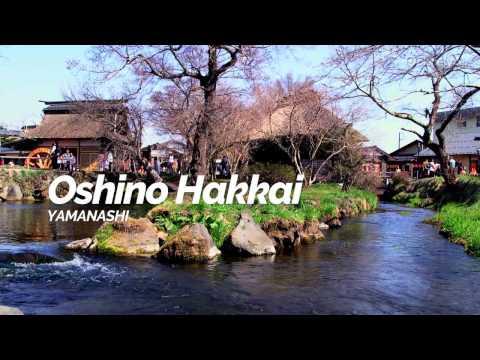 Oshino Hakkai,Yamanashi | Japan Travel Guide