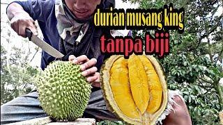 Wajib Tonton!! Durian Musangking Tanpa Biji - Pekerja Muda