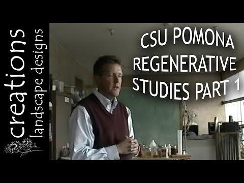Center For Regenerative Studies Sustainable Living At CSU Pomona